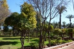 Marrakech 2013 0042